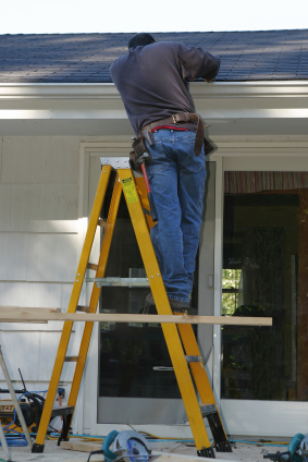roof and gutter – property maintenance